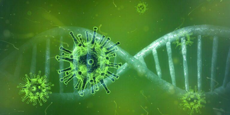 coronavirus, corona virus, covid-19